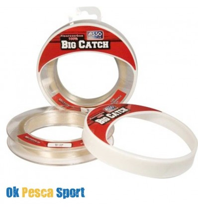 fluorocarbon ASSO BIG CATCH